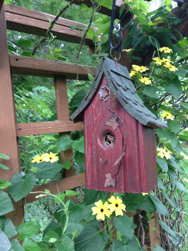 A birdhouse in the B&B's flower garden.