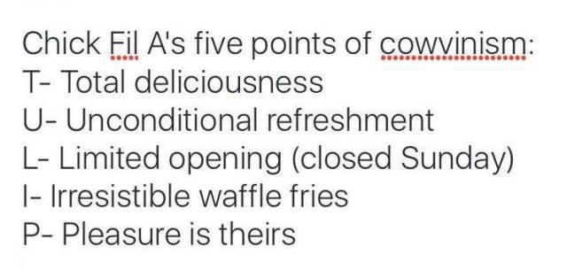 cowvinism