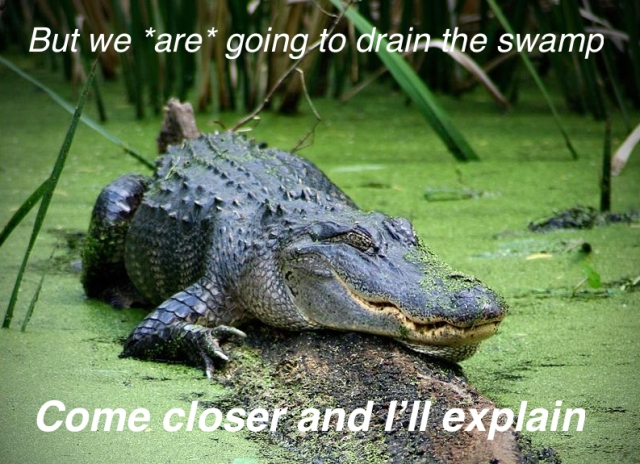 gator-text